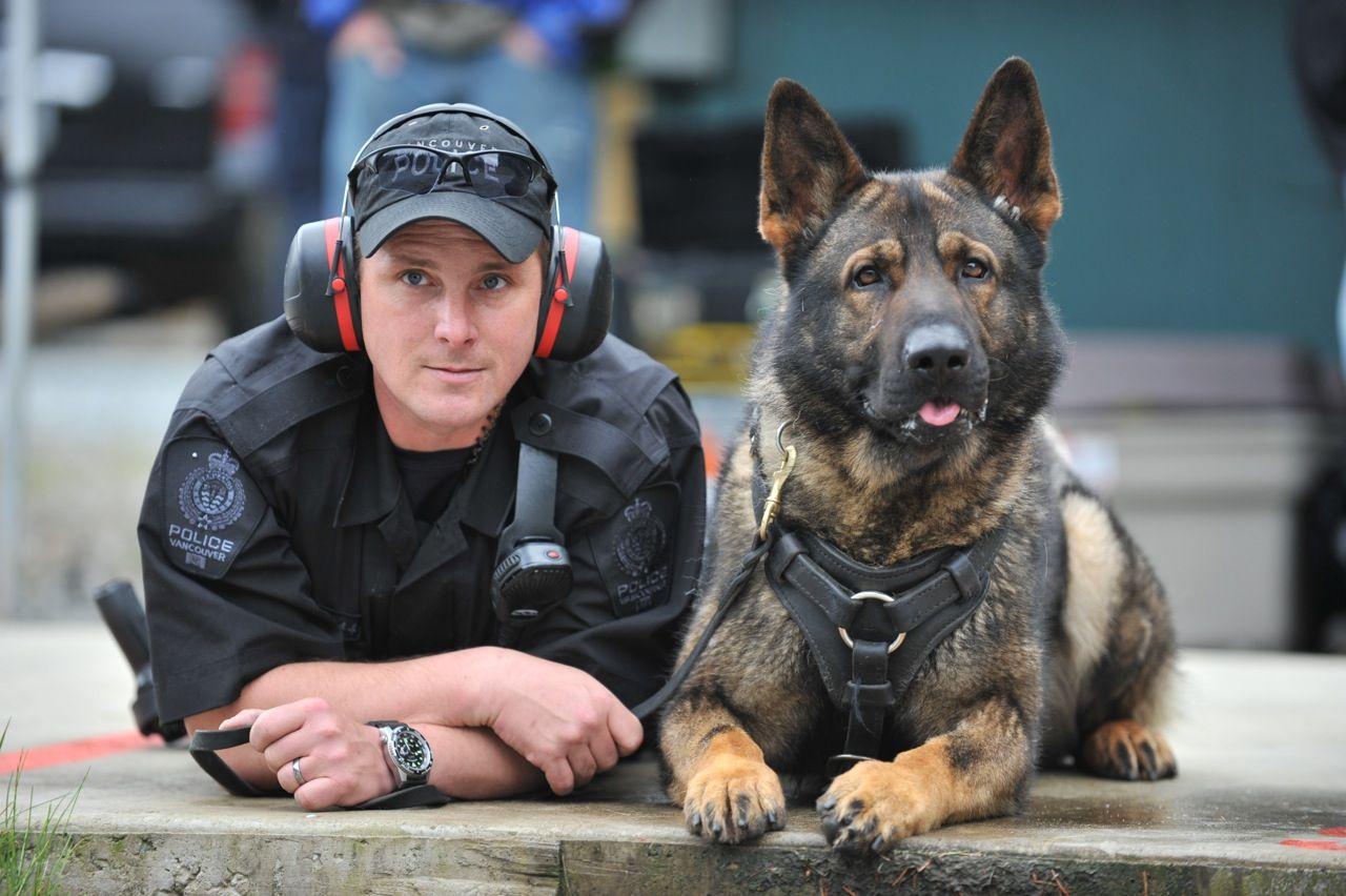 Cainele politist Foto: www.documentingreality.com
