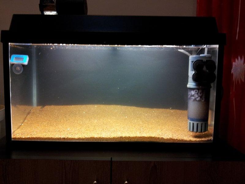 Ciclarea acvariului Foto: www.acvariidevis.ro