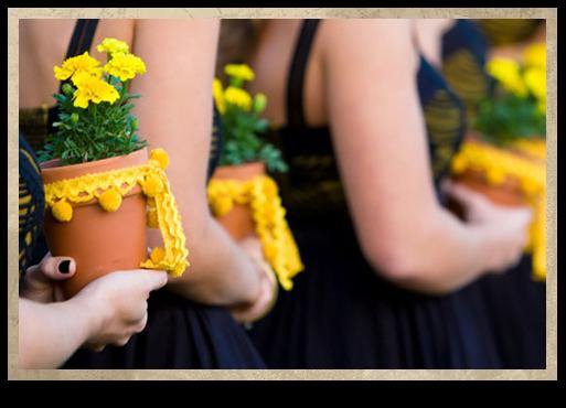 Ghivece-cu-flori-ca-alternativa-la-buchete-de-flori