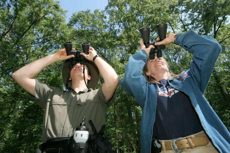 Observarea pasarilor Foto: www.italianbotanicalheritage.com