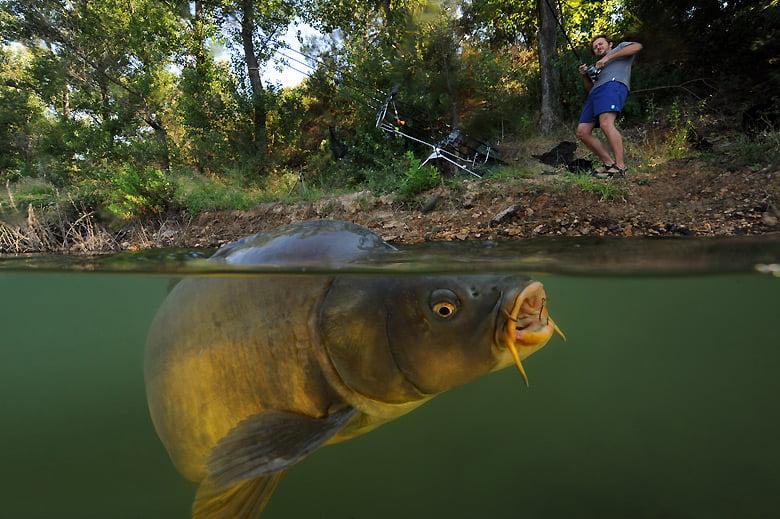 Pescuitul la crap Foto: bestcarpbait.co.uk