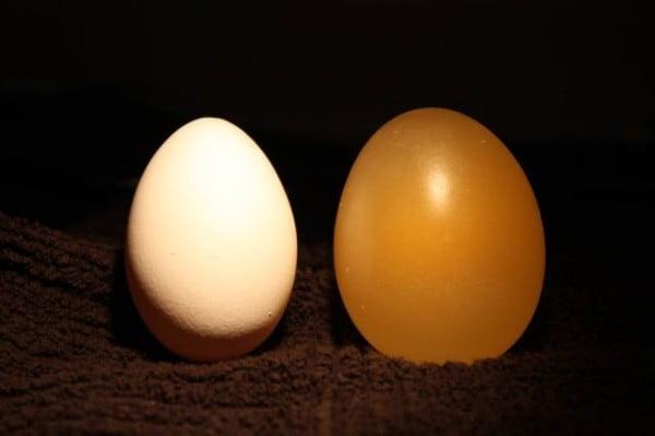 Ce se intampla cu un ou lasat in otet