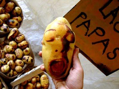 Arta-din-cartofi-20
