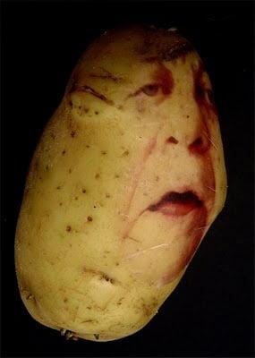 Arta-din-cartofi-22