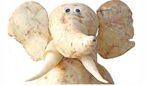 Arta-din-cartofi-32