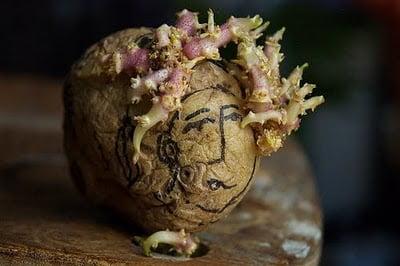 Arta din cartofi