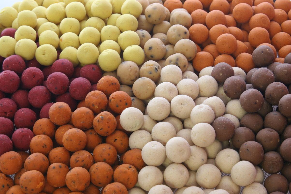 Boilie pentru crap Foto: www.carpaddict.co.uk