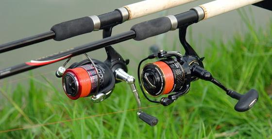 Mulineta pescuit Foto: www.pvtv.ro