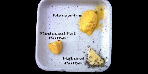 Margarina si unt, Foto: bhmagazin.com