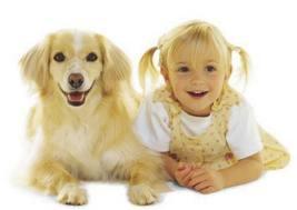 Animale de companie pentru copil