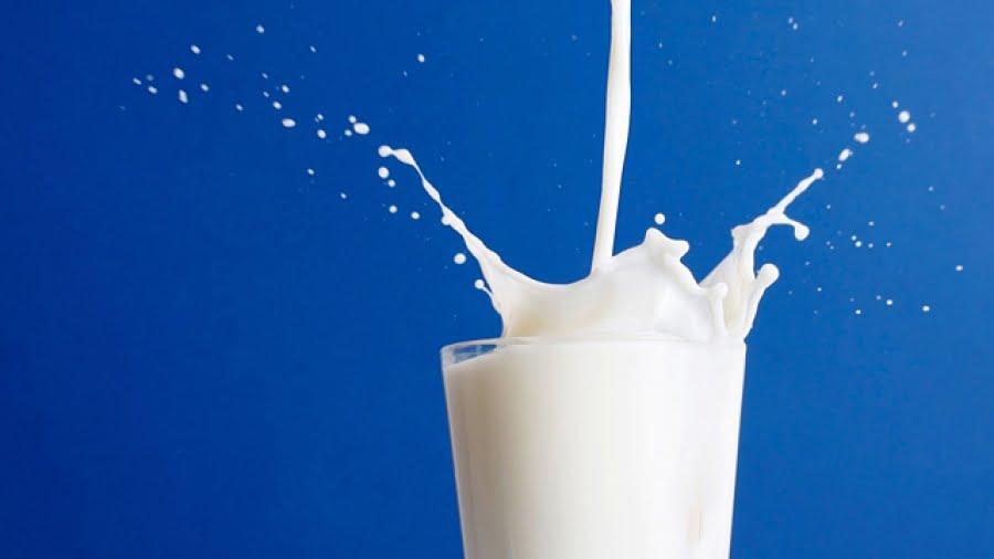 Bauturi pe baza de lapte - origine, beneficii, Foto: triseoantoan.com