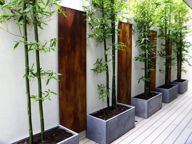 Bambusul, Foto: houzz.com