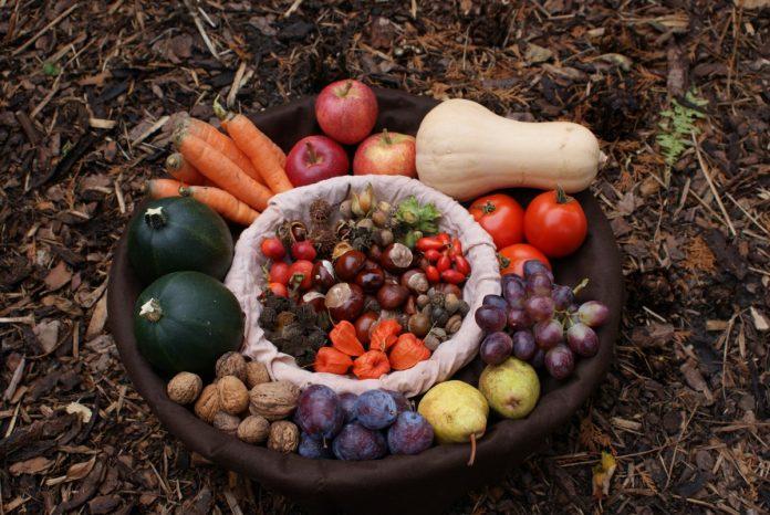 Ghid de începători pentru recoltarea fructelor din propria grădină
