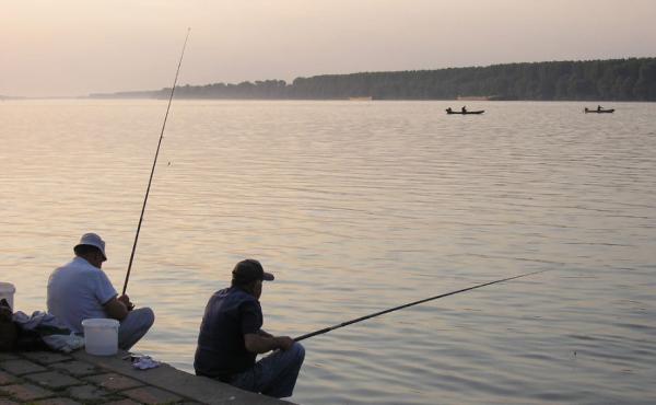 Pescuit pe Dunare Foto: www.ghidul-pescarului.ro
