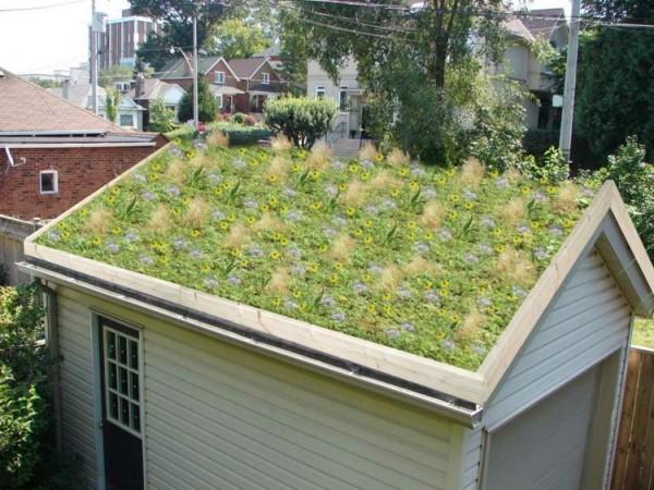Acoperis verde, Foto: deavita.com