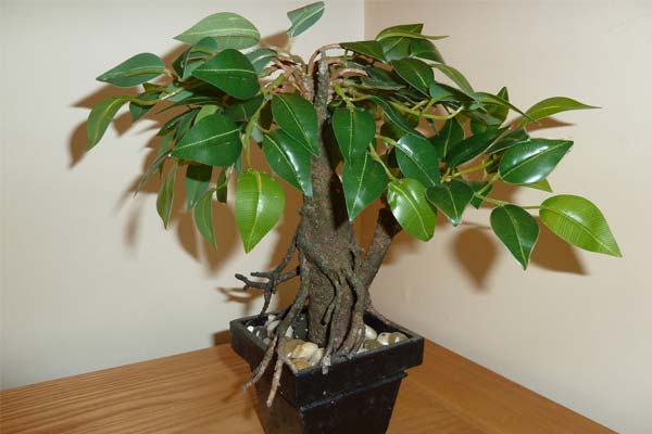 Flori artificiale, Foto: hogarus.com