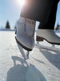 Reguli pe patinoar