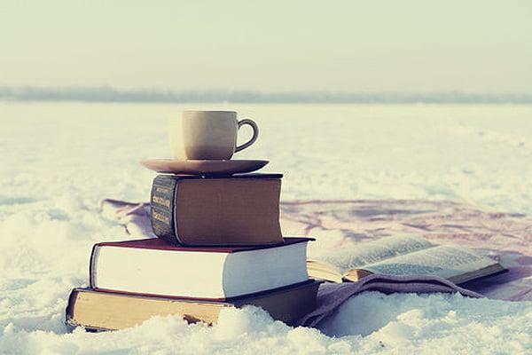 Carti de citit iarna Foto: www.quirkbooks.com
