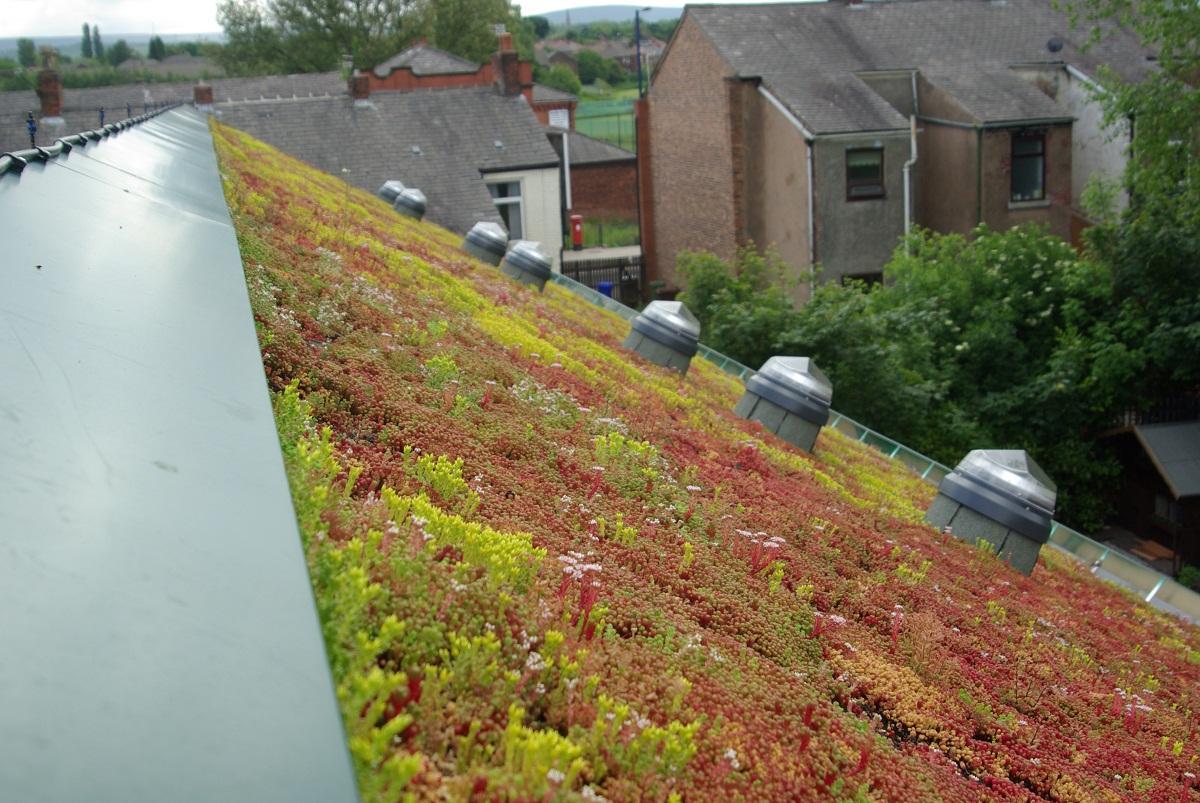 Cum puteti avea un acoperis verde, Foto: roofingnewsweekly.wordpress.com