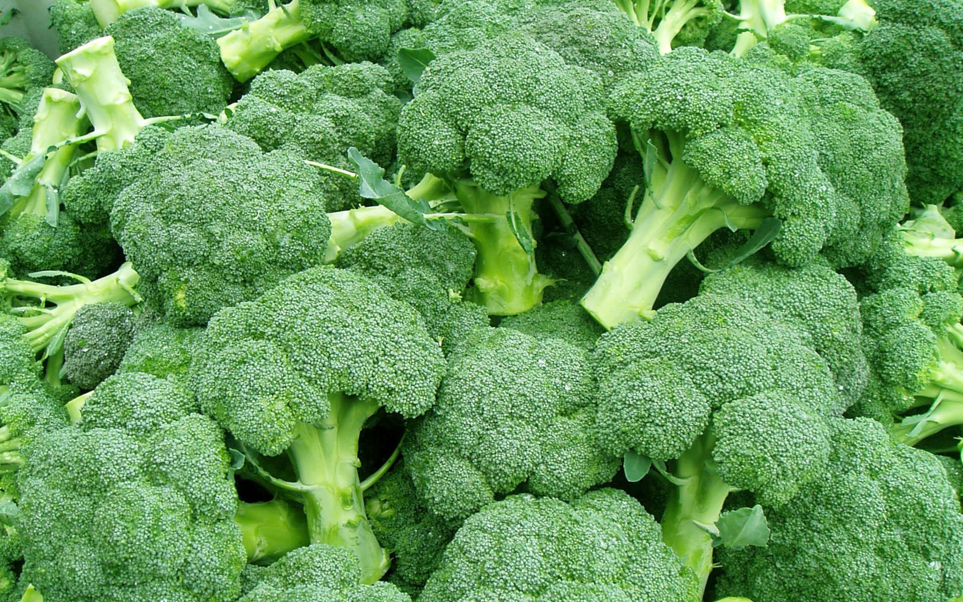 Broccoli, Foto: dalepinnock.com