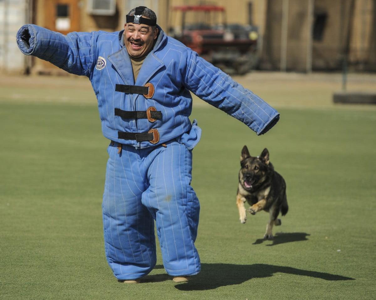 antrenamente pentru caini de paza