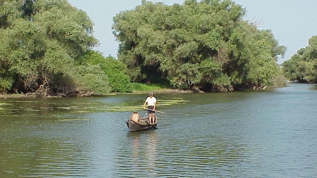 Canalul Crisan Foto: turism.bzi.ro