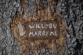 Cerere inedita in casatorie Foto: www.treebeginnings.com