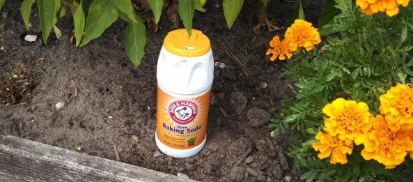 Solutie de bicarbonat de sodiu pentru plante