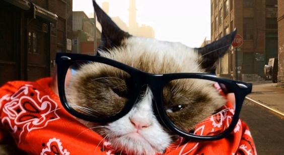 Grumpy cu ochelari