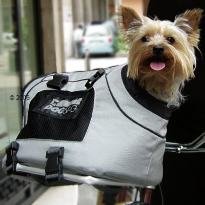Geanta moderna pentru transportul cainelui, Foto: petproductsal.blogspot.com