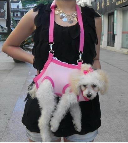 Geanta pentru catei, Foto: dailyimagebuzz.blogspot.com