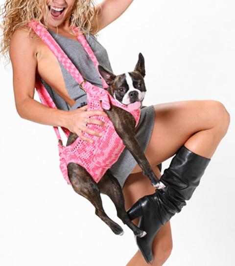 Un accesoriu interesant pentru purtat cainele, Foto: conceptrends.com