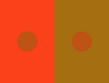 Cercuri identice