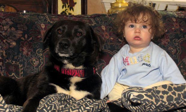 Copilul și cainele său