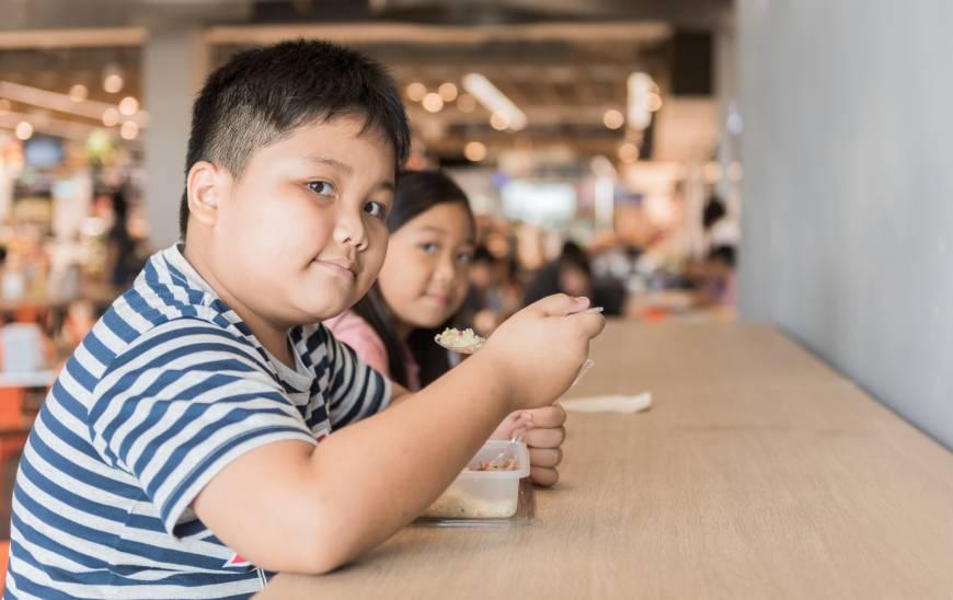 2-obezitatea