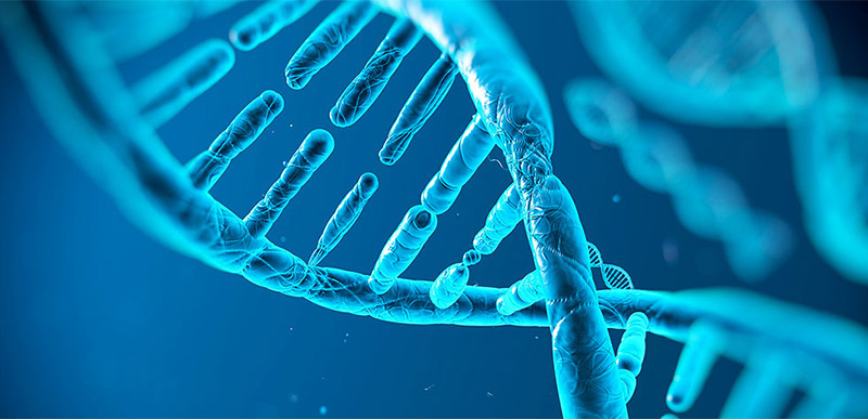 4-ADN