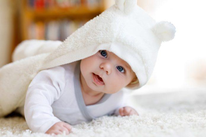 1-bebelus