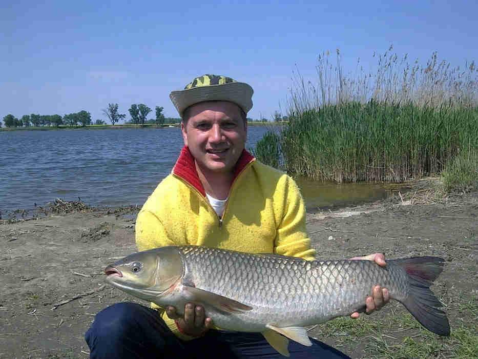 12-pescuit