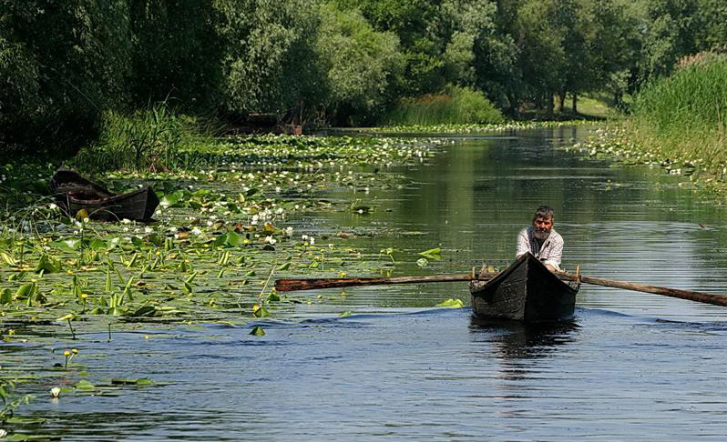 5-pescar