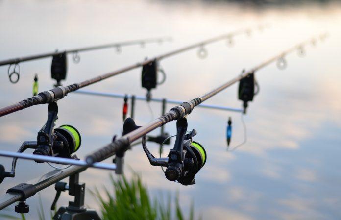 Pescuit la crap profesionist