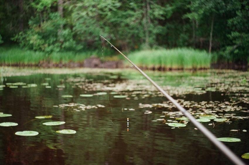 Locuri de pescuit în România